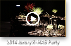 2014 luxury X-MAS Party