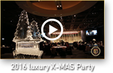 2016 luxury X-MAS Party